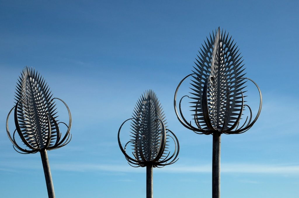 Teasel sculpture detail