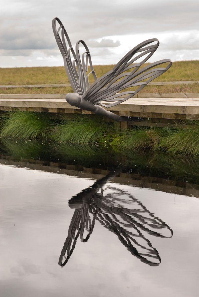 Blawhorn Moss dragonfly